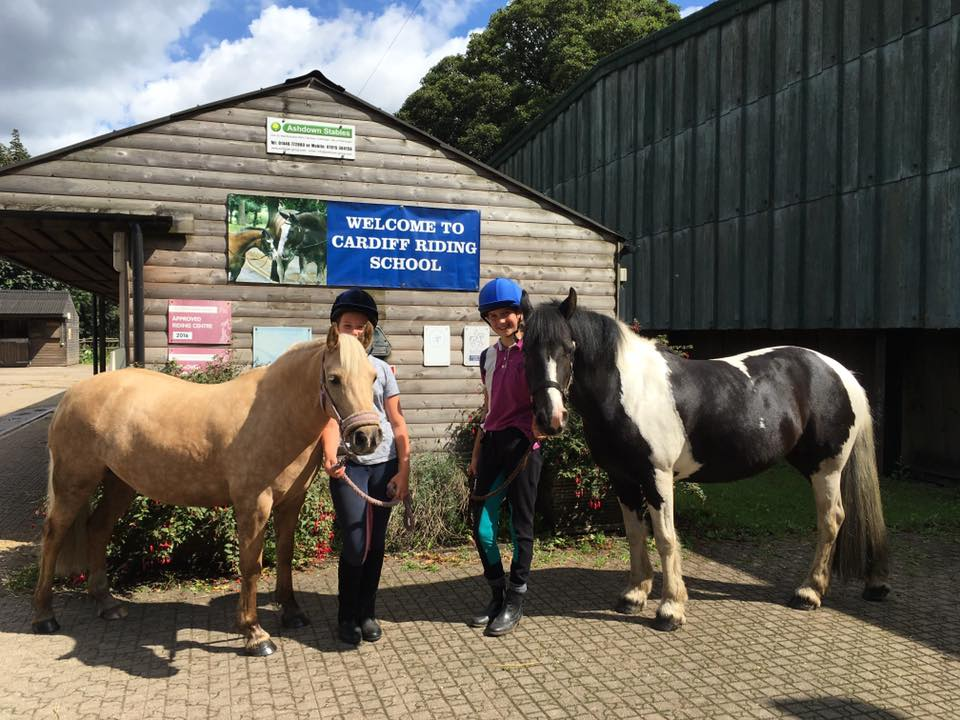 Cardiff Riding School - Horse Riding sessions available : Outdoor Cardiff
